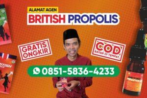 Alamat Agen British Propolis di Jakarta Pusat