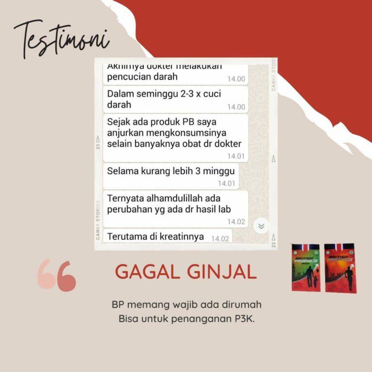 testimoni british propolis office indonesia (11)