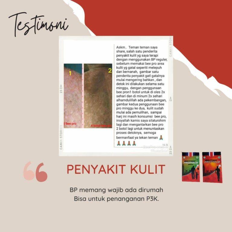 testimoni british propolis office indonesia (3)